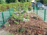 Bernd-Formann-Galabau-Garten--Grunanlagen-6