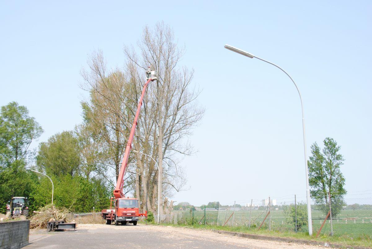 Bernd-Formann-Galabau--Baumarbeiten8